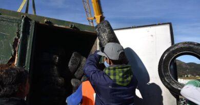 Trabajadores llenan contenedor con neumáticos, Ushuaia